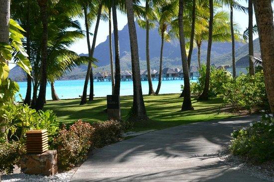 Four Seasons Resort Bora Bora: jardins