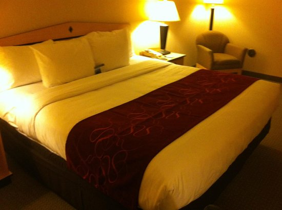 Comfort Inn & Suites Airport: Bed Update