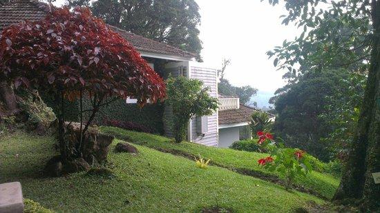 The Tall Trees Munnar : Rooms