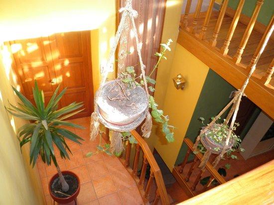 Eureka San Blas: Zona central con escaleras que unen distintos espacios