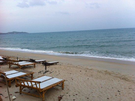 Samui Beach Resort: Beach