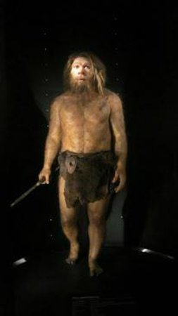 Museo de la Evolución Humana: Se pueden hacer fotos pero sin flash...