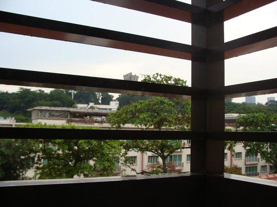 Hotel Nostalgia : View through the shutters