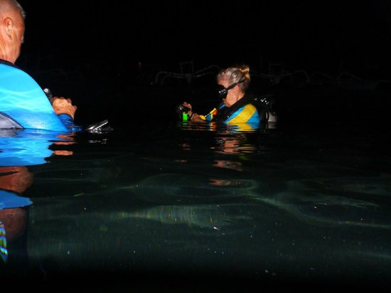 Solaluna Beach Homestay: Night dive from the beach in from of bungalows