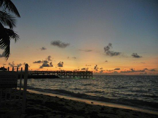 Key Colony Beach Motel : Sonnenaufgang am Key Colony Beach