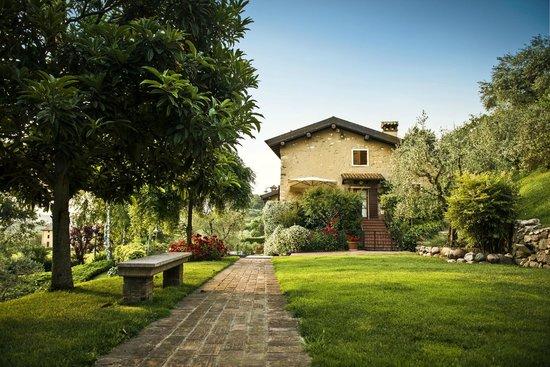 Corte delle Cicale : The garden