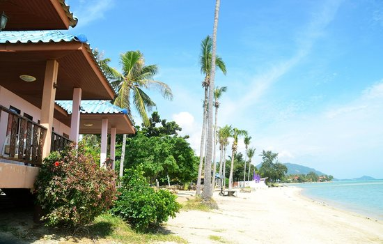 The Beach Village Backpackers: Beachfront & Bungalow