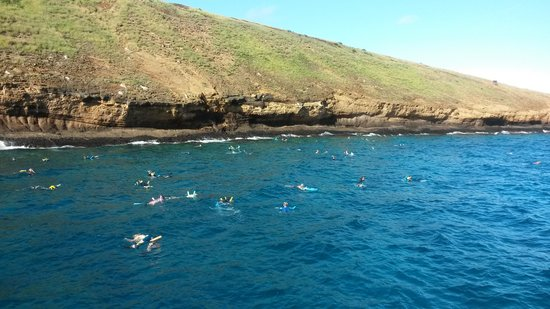 Molokini Crater: too crowded