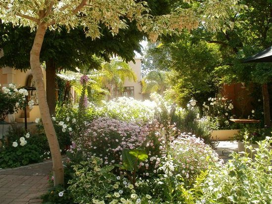 Montagu Country Hotel: The garden is full bloom
