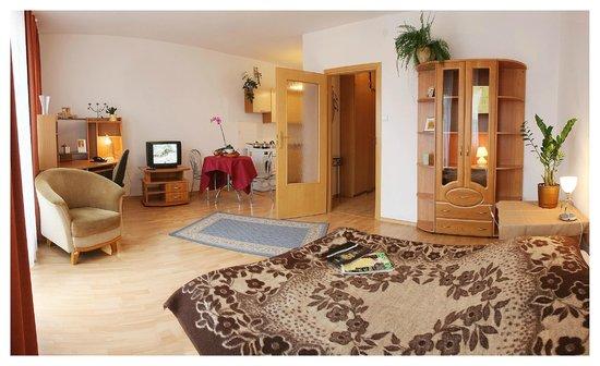 Apartment Hotel Arche: Jednopokojowe