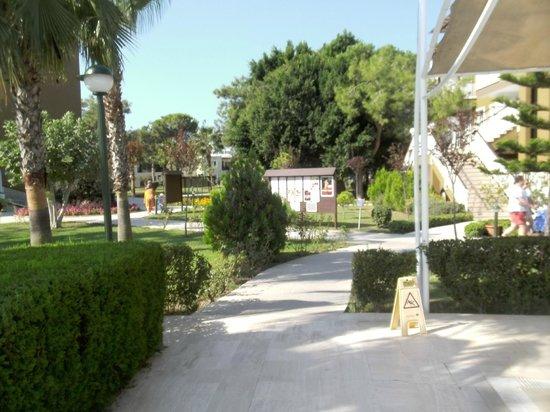 Otium Eco Club Side: vue sur le parc