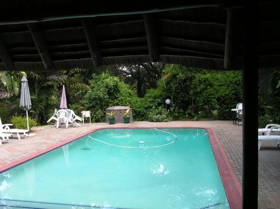 Sunbird Lodge: Pool from my room