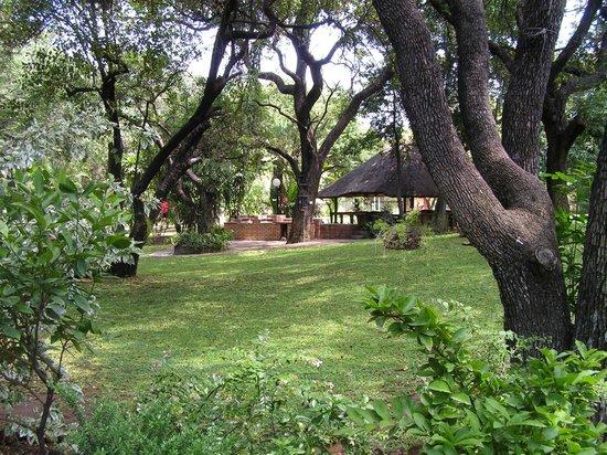 Sunbird Lodge: Gardens