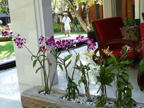 Griya Santrian: La réception