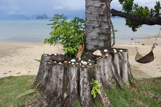 Villaguna Residence & Hotel Ko Yao Noi : Shells & coral decorate the foreshore