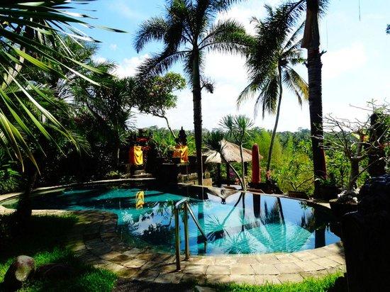 Bunga Permai Hotel: Prachtig uitzicht op de tuin