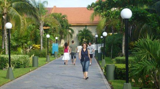 Hotel Riu Playacar: Via principal