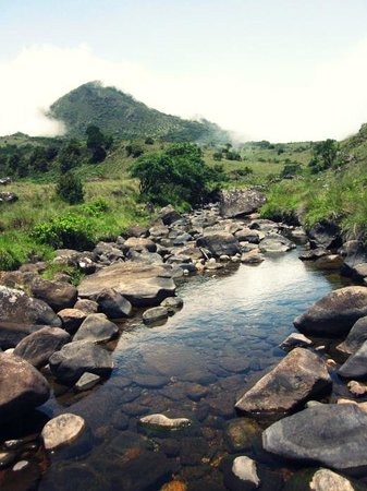 A beautiful stream that one has to cross before beginning the final ascent to the Mukurti Peak.