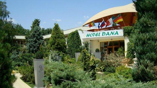 Dana: entrata reception