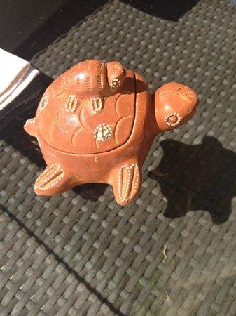 La Libertie: I liked this turtle