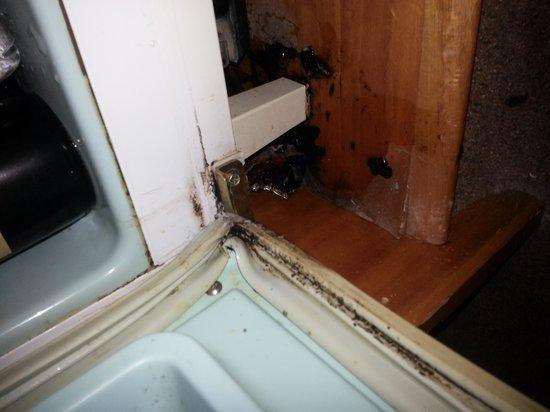 Rydges Melbourne Hotel: leaking / moldy /dusty bar fridge