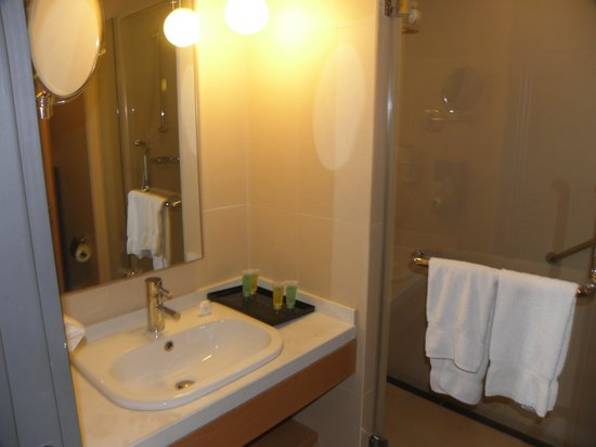 Amman Airport Hotel: Bathroom