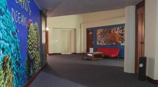 Hotel Plaza Rosa: Me tocó en un piso llamado océanos