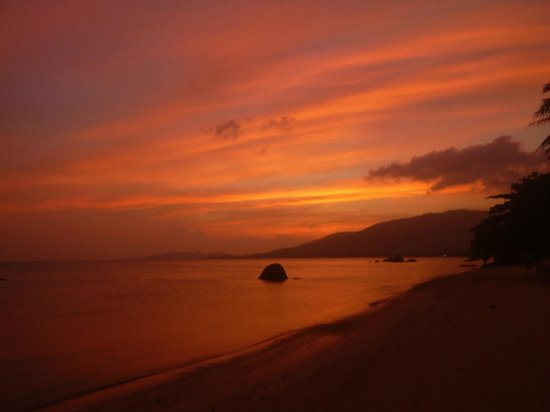 Palm Coco Mantra: Beautiful Sunset on the Beach