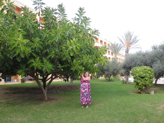 Nour Palace Resort : Иванова Нина