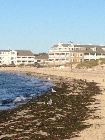 Edgewater Beach Resort: Beach
