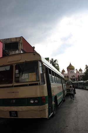 Kuching Mosque: 14