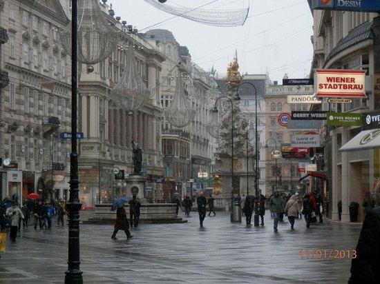 Renaissance Wien Hotel: Это не отель, просто Вена в январе