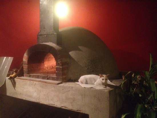 Pizza Phan Luang: เตาพิซซ่าอุ่นๆ