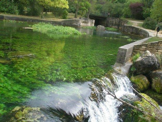 L'Isle-sur-la-Sorgue, Francia: Flodens udspring
