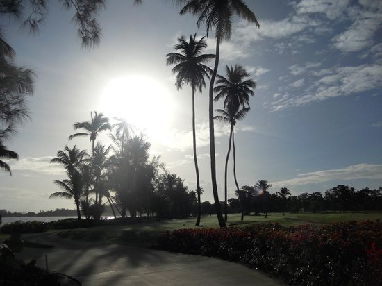Dorado Beach Resort & Golf Club : Sunrise on hole 1