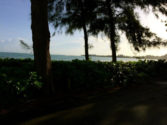 Dorado Beach Resort & Golf Club: The view on hole 1