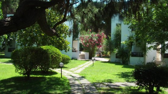 Simena Sun Club: бунгала утопают в зелени