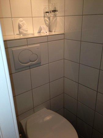 Scandic Holberg: Bathroom shelf