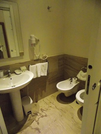 Hotel Roma Vaticano : Bathroom