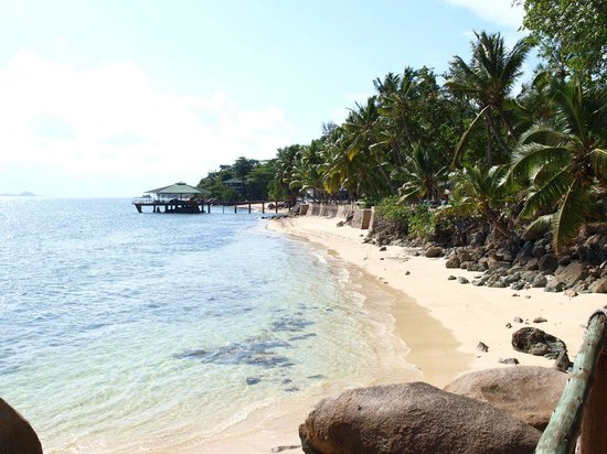 Coco de Mer - Black Parrot Suites: Пляж