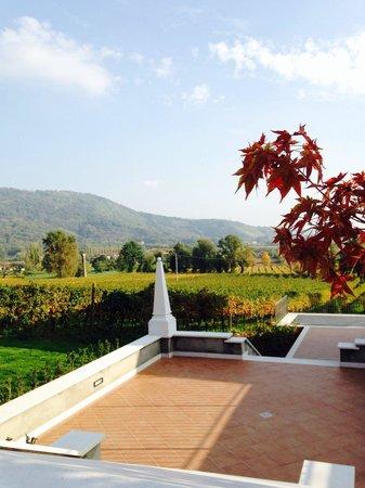 Agriturismo Corte Lantieri: Paesaggio fantastico, bellissimi i colori autunnali!