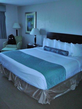 BEST WESTERN Vista Inn: Zimmer