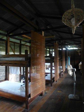 Paganakan Dii Tropical Retreat : dorms