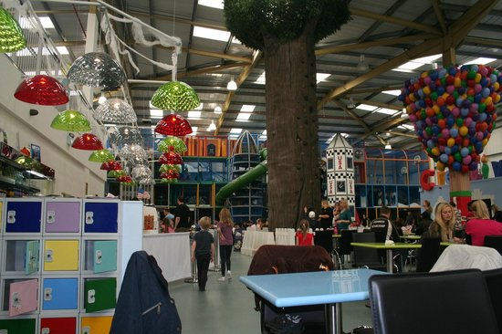 Riverside Hub: view of climbing frame and climbing tree