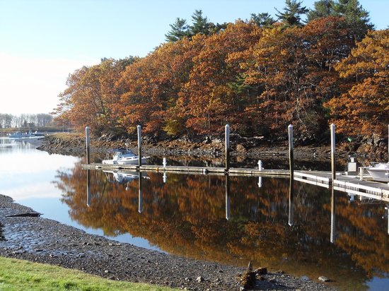 Yachtsman Lodge & Marina: The leaves turning