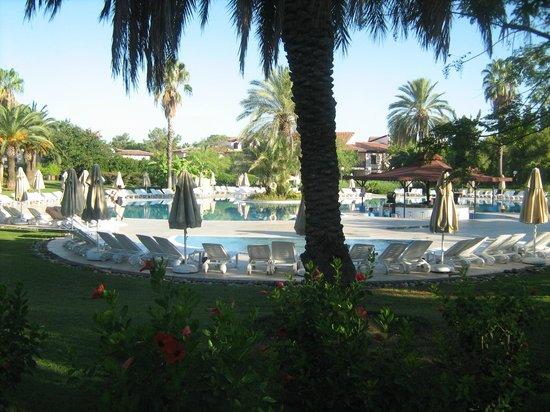 Sunrise Resort Hotel: бассеин