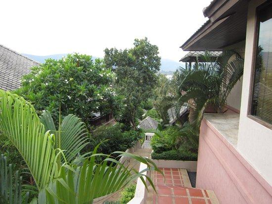Fair House Villas & Spa : идти, утопая в зелени
