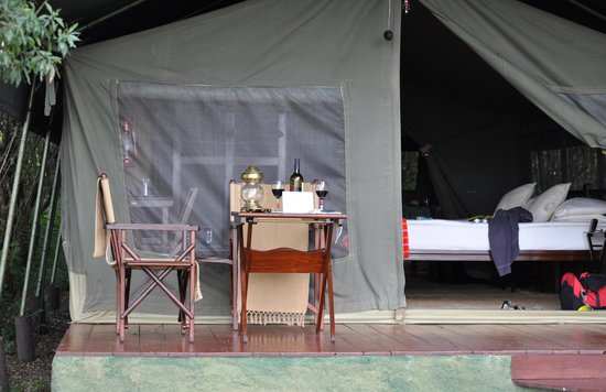 Elephant Pepper Camp: Our Tent