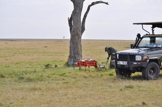 Elephant Pepper Camp: Bush Breakfast With James