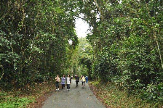 Parque Estadual da Cantareira - Núcleo Pedra Grande